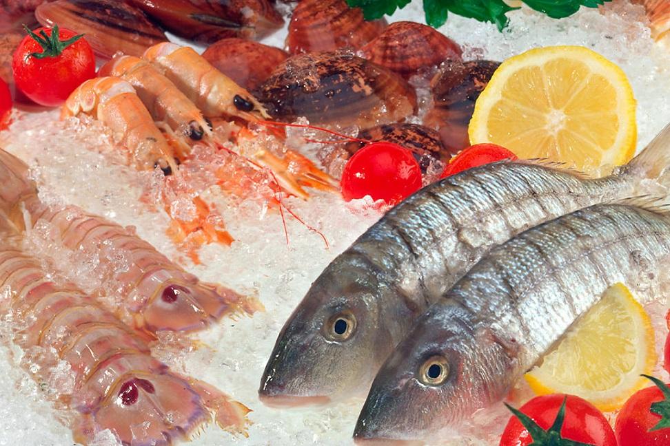 Ciad ofrecer taller para profesionales en calidad e for Canelones de pescado y marisco