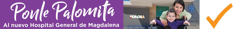 banner hg magdalena